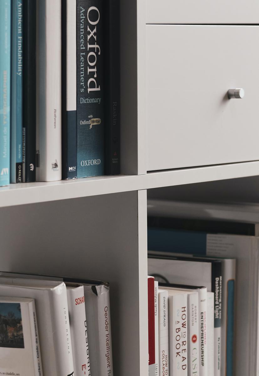 bookshelf with dictionary